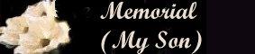 A Memorial/My Son